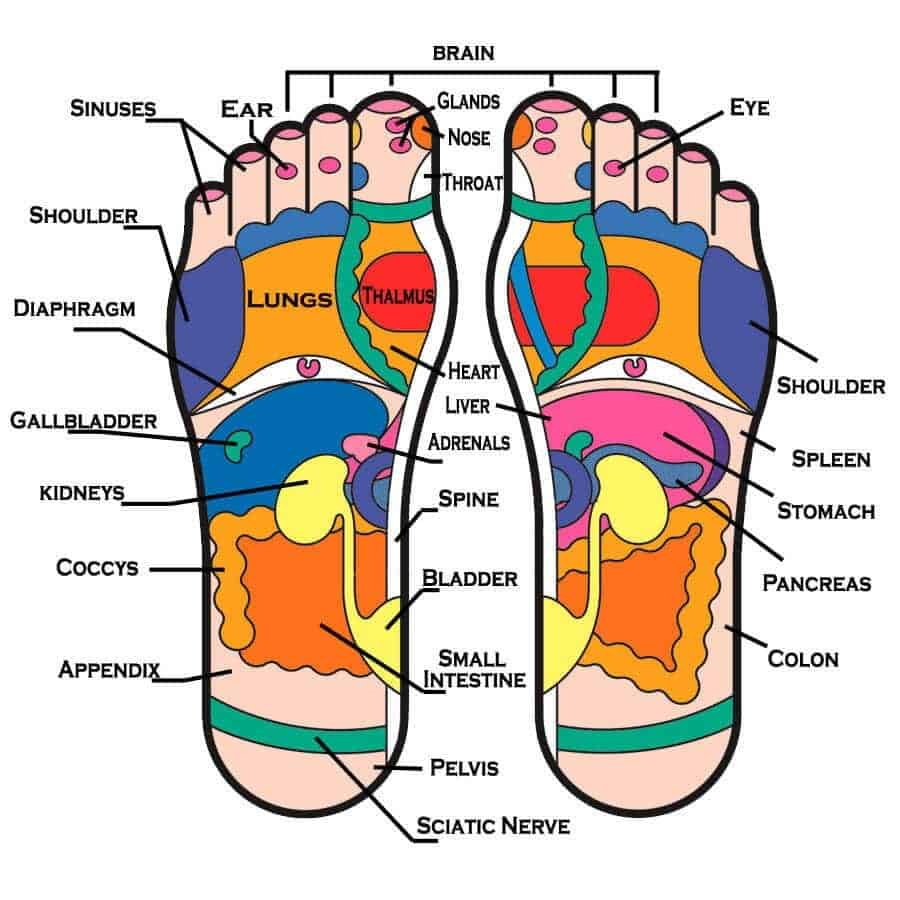 reflexology map for application of detox pads